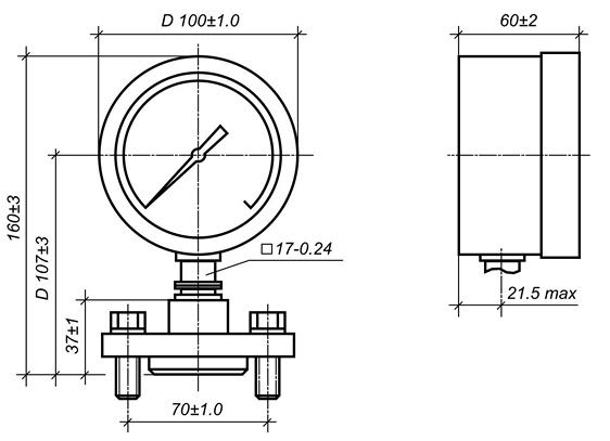 МТП-100/1-ВУМ - радиальное расположение штуцера с мембранным разделителем